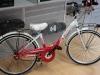 Bici Bimba ruota 24